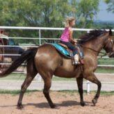 Letní tábory s koňmi